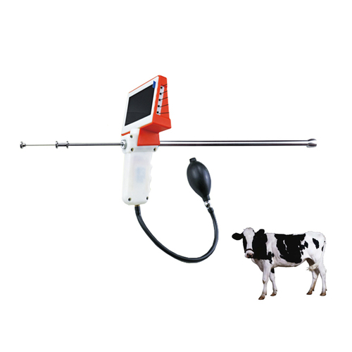 Visible A.I. Gun for cow